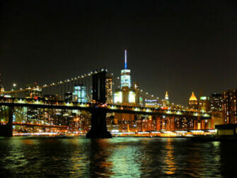 Crociera con cena a New York - Skyline