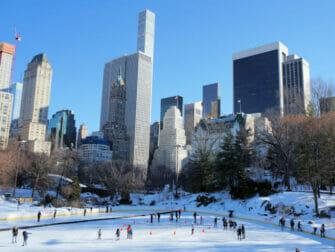 Pattinare a New York - Wollman Rink