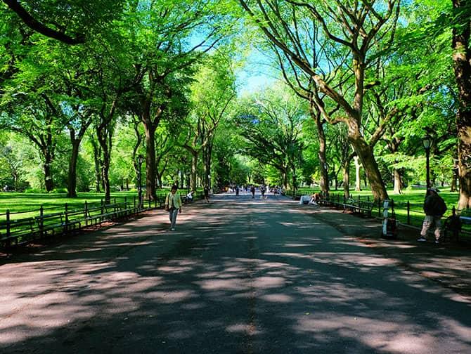 Labor Day a New York - Passeggiata in Central Park