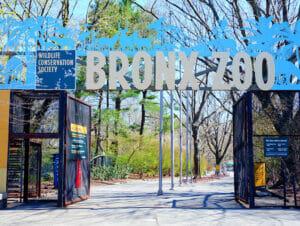 Bronx Zoo in New York