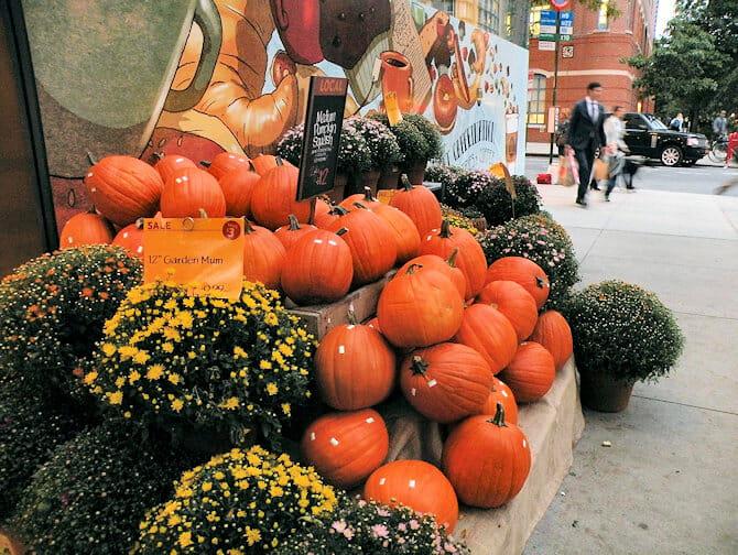 zucche di Halloween New York