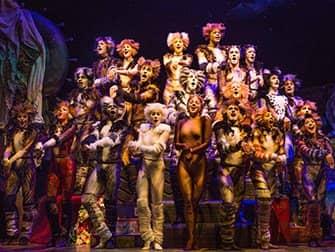 Cats a Broadway - Ensemble