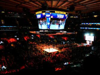 Biglietti per il WWE Wrestling a New York - Pubblico