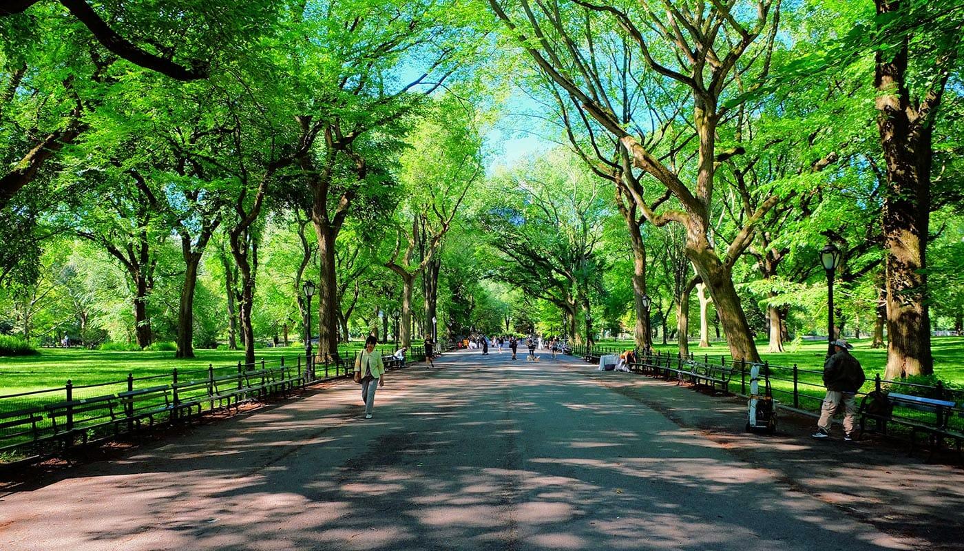 Festa della Mamma a New York - The Mall in Central Park
