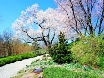 Botanical Gardens di New York - New York Botanical Garden nel Bronx